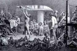 A sociedade colonial - o tráfico escravista