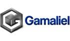 Faculdade Gamaliel