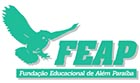 Fundação Educacional de Além Paraíba - Faculdade de Ciências Jurídicas e Gerenciais Alves Fortes